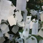 Buon anno dall'albero dei desideri di Barbaro nella Galleria Umberto di Napoli