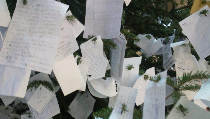 Rubato l'albero dei desideri nella Galleria Umberto di Napoli