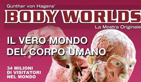 """""""Body worlds"""": l'anatomia del corpo in mostra all'Albergo dei Poveri"""