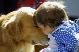 Primo Master in Pet Therapy in Italia, a promuoverlo è la Federico II