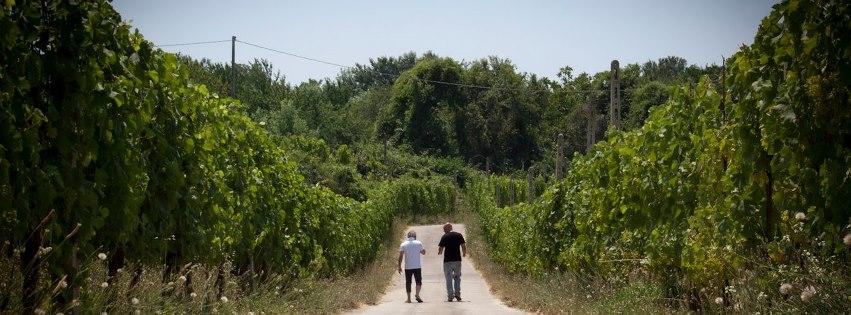 """Cooperativa Resistenza. Pasquetta alla """"Selva Lacandona"""""""