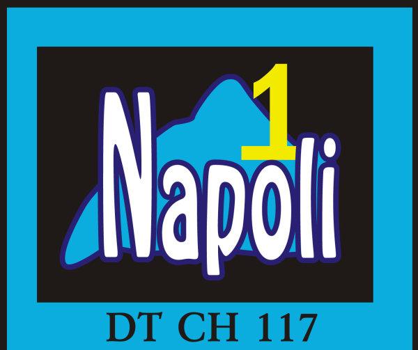 Tg Flash di Napoli 1 del 23 luglio 2013 (VIDEO)