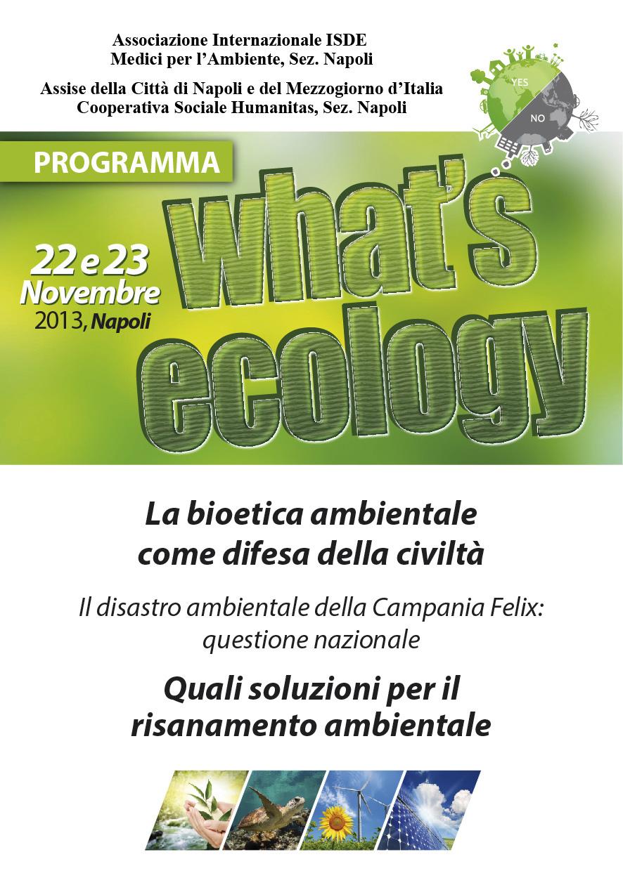 What's ecology. Quali soluzioni per il risanamento ambientale? (VIDEO)