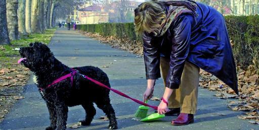 Vomero, test Dna per cani. Scattano controlli per le feci in strada