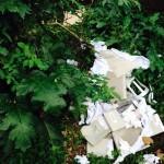Villa Floridiana al Vomero ormai in degrado. Di chi è la colpa?
