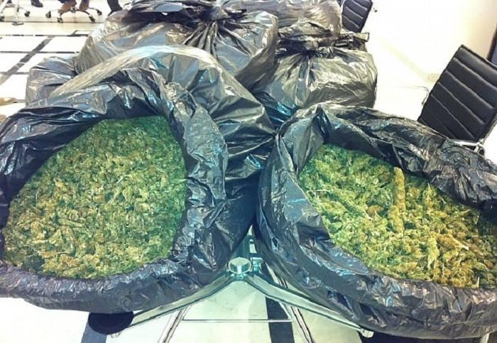 Sequestrati 50 kg di marijuana: operazione della Polstrada sulla A16