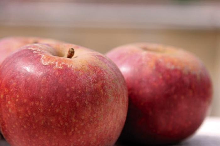 La mela di Eva? Era una Mela Annurca