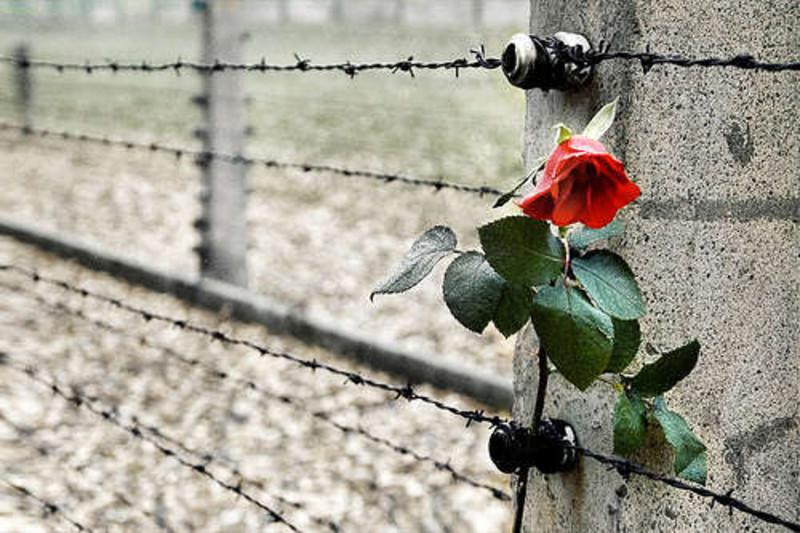Giornata della Memoria: iniziative a Napoli per ricordare la Shoah
