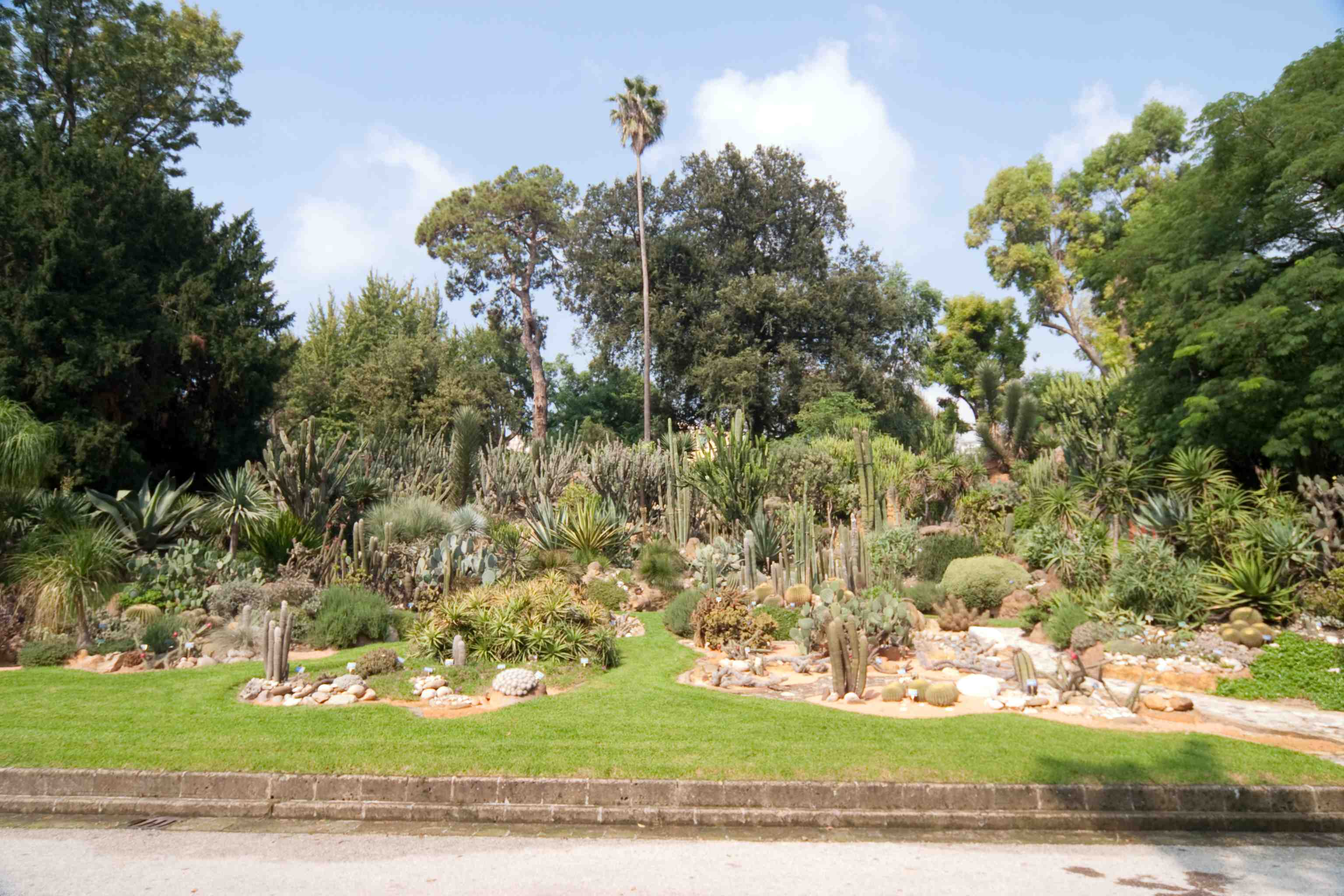 Real Orto Botanico di Napoli, apertura straordinaria l'8 marzo
