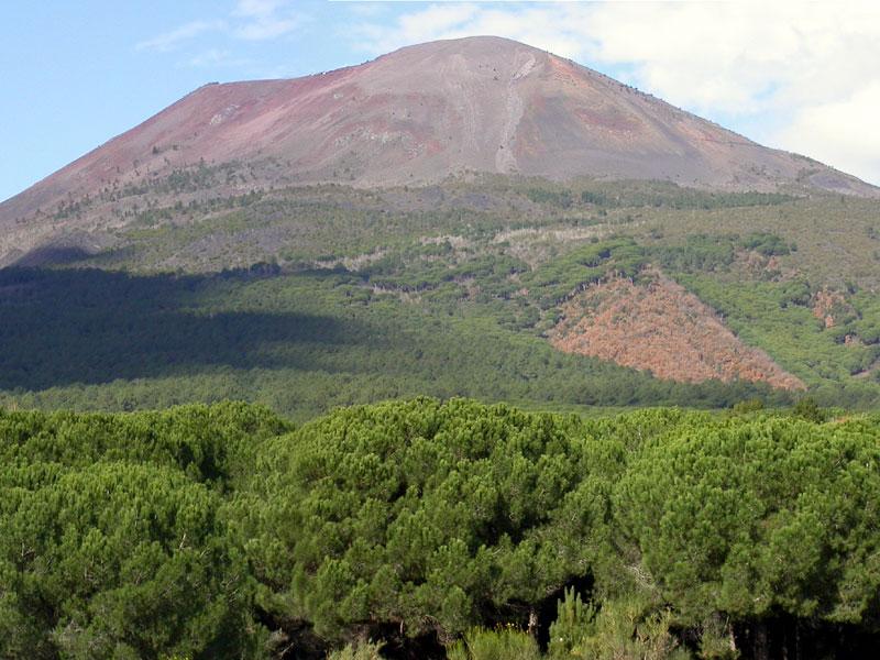 Stop Biocidio sul Vesuvio, scritta lettera al Papa