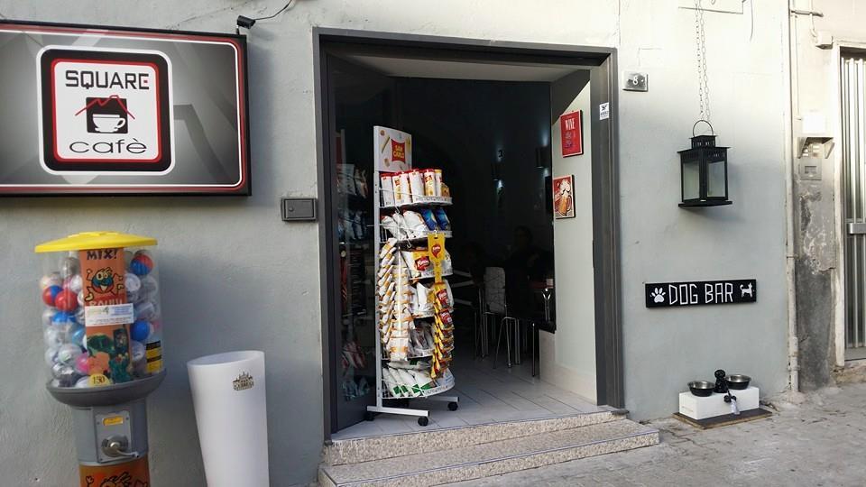 Bar per cani a Torre del Greco. Ospitalità anche per i randagi