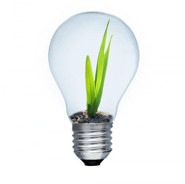 Risparmiare energia utilizzando bene i grandi elettrodomestici