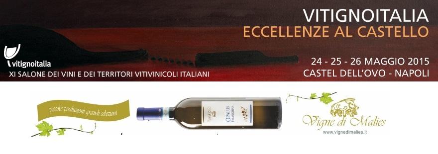 VitignoItalia 2015: arriva a Napoli il salone internazionale dedicato ai vini