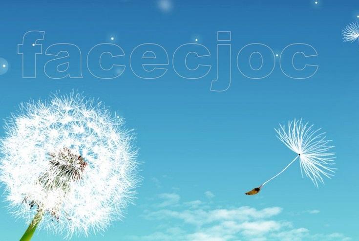 Ecco Facecjoc, il social network dei dialetti