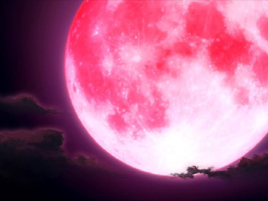 Luna Rosa oggi 2 giugno ore 21, spettacolo da non perdere