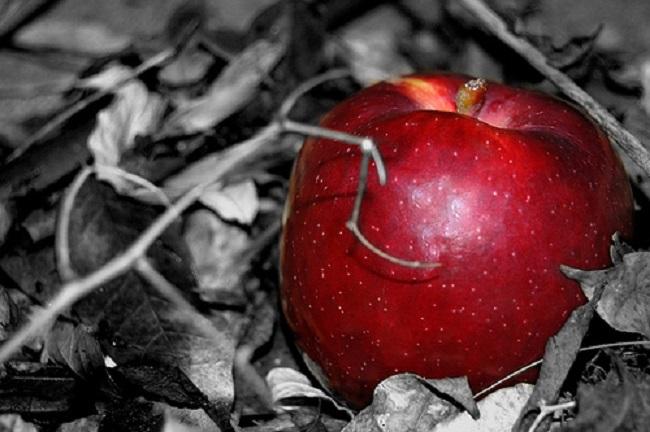 Giochi erotici nel salernitano: uomo in ospedale per una mela...