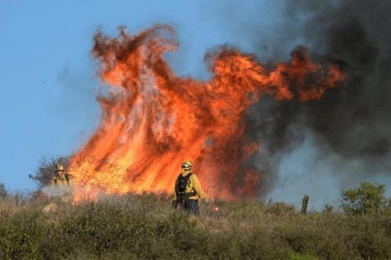 Incendi in Italia: Campania regione più colpita