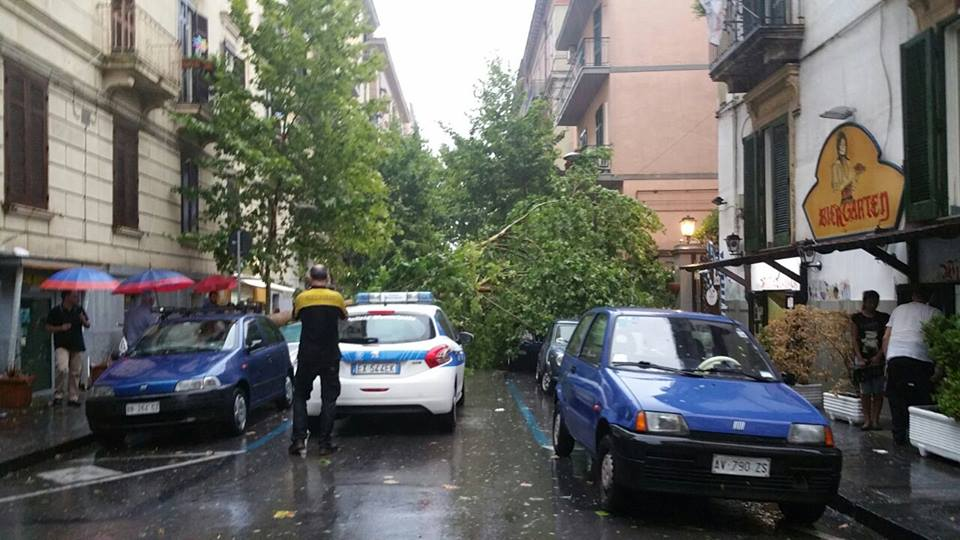 Maltempo a Napoli: alberi caduti e crolli di calcinacci in tutta la città