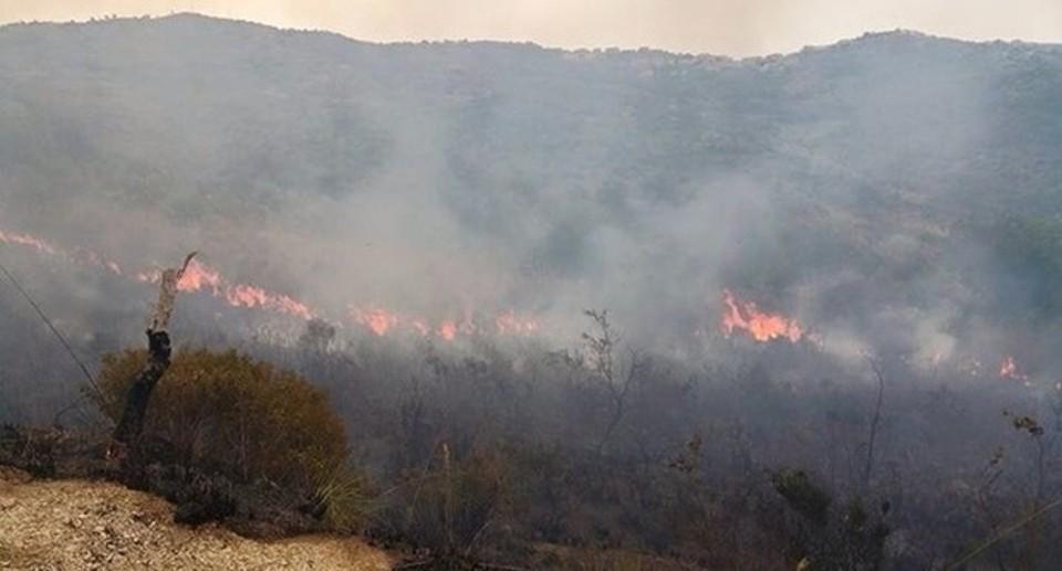 Incendio ad Agnano: indicate in zona bombole di gas