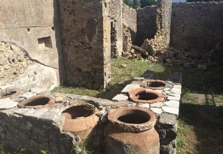 Crolla muro a Pompei in un'area non aperta al pubblico