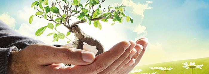 Le Quattro giornate dell'ambiente, della salute e della legalità: dal 27 al 30 settembre a Napoli