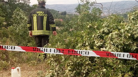 Muore schiacciato da un albero: corpo estratto dai vigili del fuoco