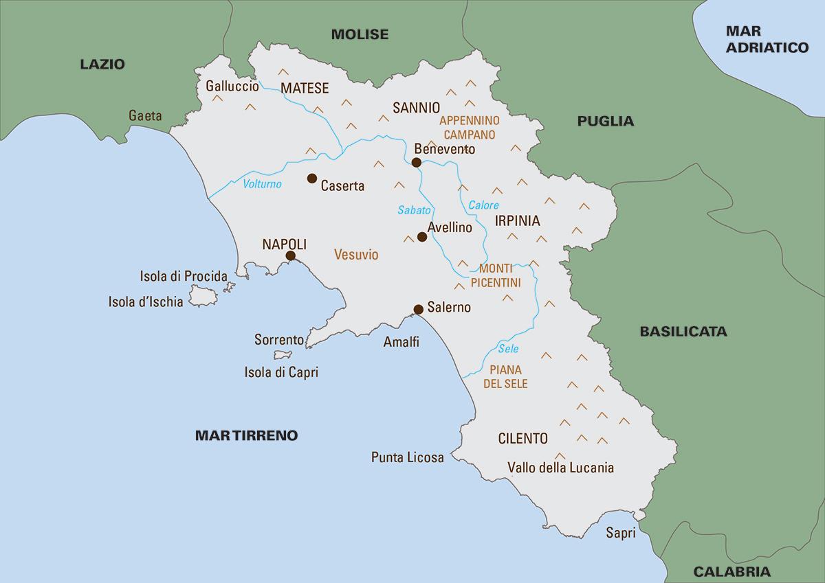 La diffusione della lingua napoletana e di altri dialetti campani studiata da un blog