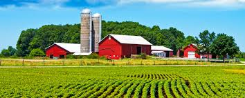 Green Farm Corporation: la prima fattoria ecologica è tutta napoletana