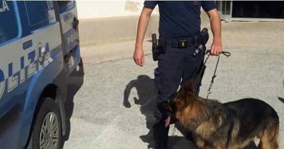 Droga e abusivismo edilizio nel Napoletano, 3 denunciati