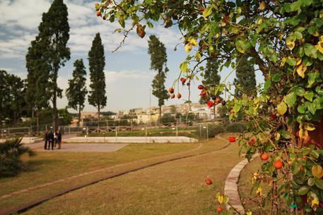 Scavi di Ercolano: dedicato all'archeologo Amedeo Maiuri il nuovo parco urbano