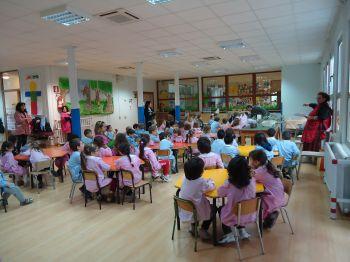 Sciame di api aggredisce bambini di una scolaresca nel Vesuviano