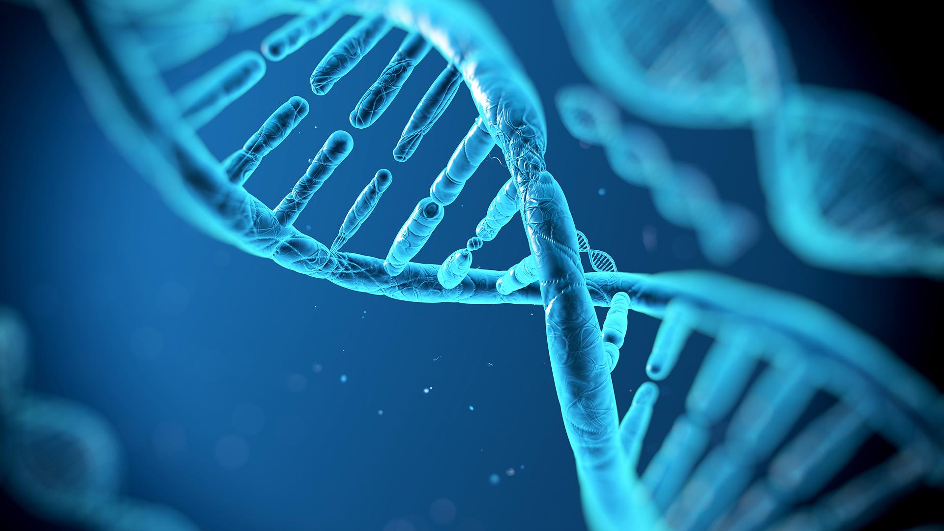 Dall'Igb-Cnr una risposta relativa al tumore a cellule giganti