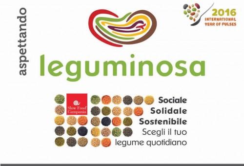leguminosa 2016