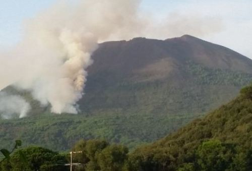 Incendi: piromane in manette nell'Avellinese