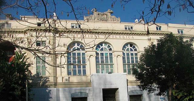 Nuovo progetto a Napoli per biblioteca della stazione zoologica