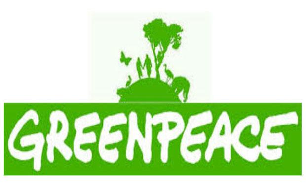 Greenpeace: al bando pesticidi dannosi per api e altri impollinatori