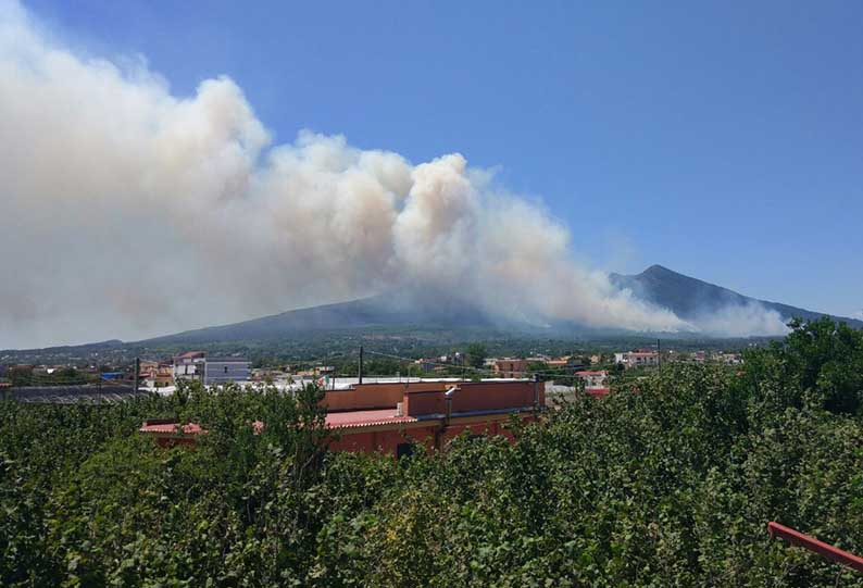 """Incendi, Mattarella: """"Punire con determinazione e severità"""""""