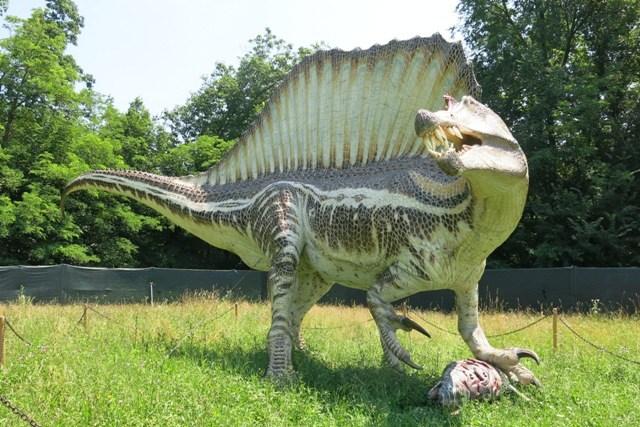 """Torna agli Astroni """"Dinosauri in Carne e Ossa"""""""