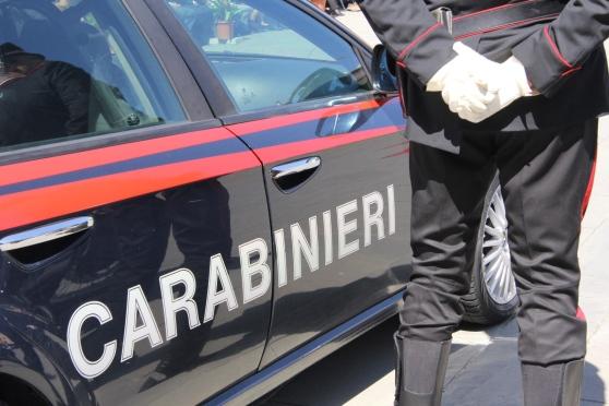 Blitz dei Carabinieri forestali in Campania: scoperti allevamenti abusivi