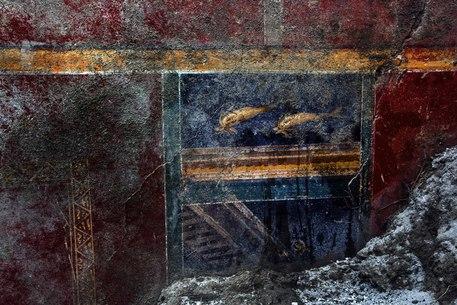 Torna a Pompei la domus del delfini