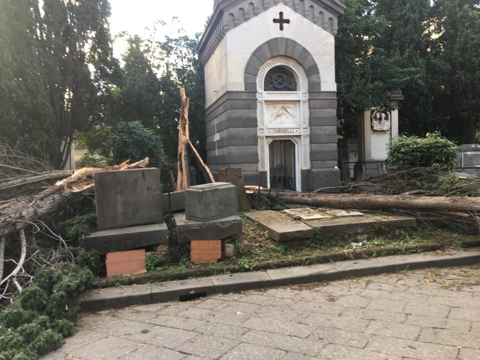 Alberi crollati per il forte vento, costretto a chiudere il cimitero di Poggioreale