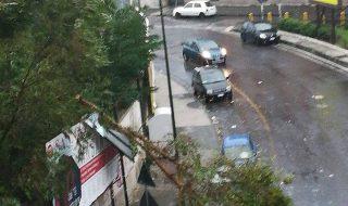 Alberi sradicati e tetti spazzati via, il vento mette in ginocchio Napoli (FOTO)
