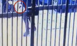 Sparatoria a Napoli: in un video, il killer scavalca il corpo della piccola Noemi