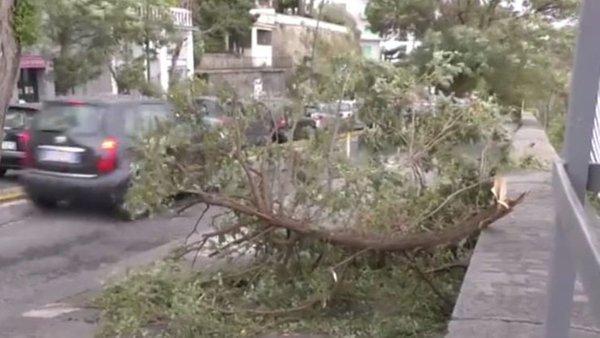 Maltempo, tragedia a Napoli: uomo muore schiacciato da un albero