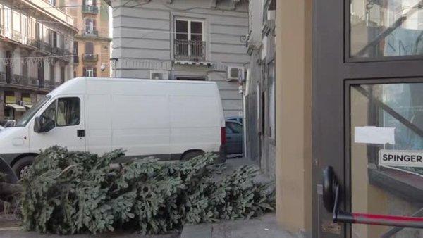 Rubato l'albero di Natale in piazza a Forcella
