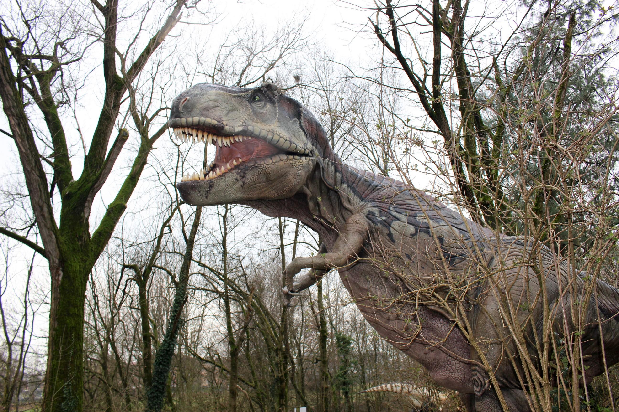 Zoorassic Park, allo zoo di Napoli esposizione interattiva di dinosauri giganti