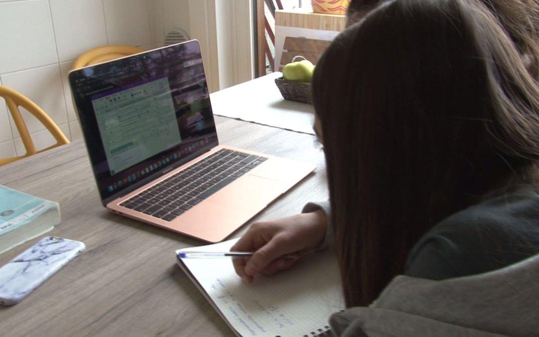 La didattica a distanza, ovvero lo smart working della scuola