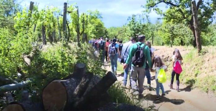 Selva di Chiaiano: un patrimonio da preservare (VIDEO)