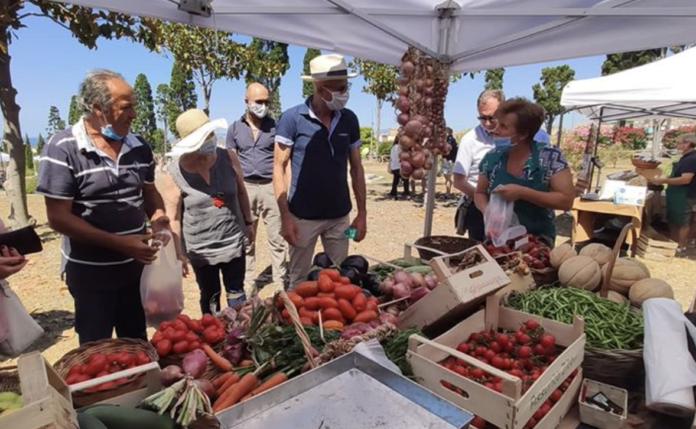 Open Market - Domenica 6 giugno Mercato della terra al Parco Maiuri