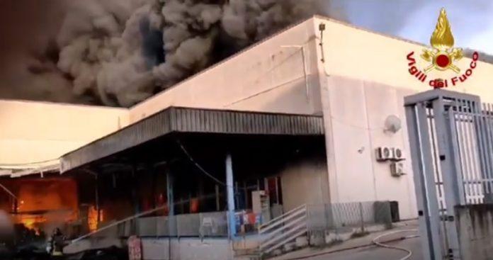 Incendio nel Casertano: fabbrica di caffè distrutta